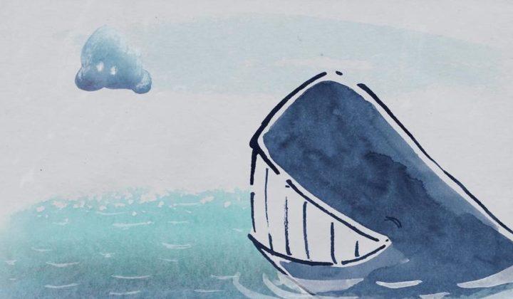 Wieloryb i chmura / Tuczka i kit